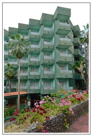 Hotel DC Xibana Park: Pasillo de vegetación canaria