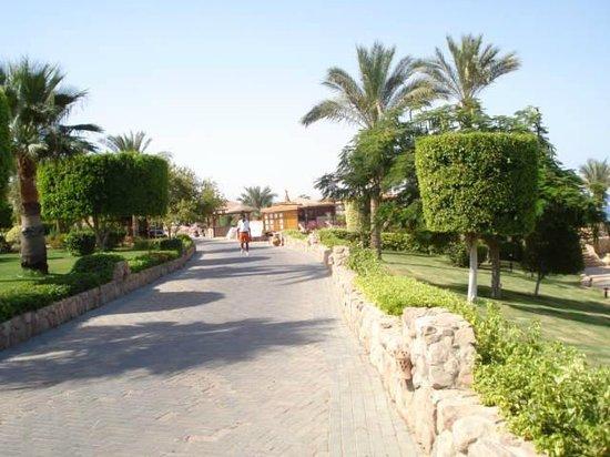 Renaissance Sharm El Sheikh Golden View Beach Resort: esterno hotel