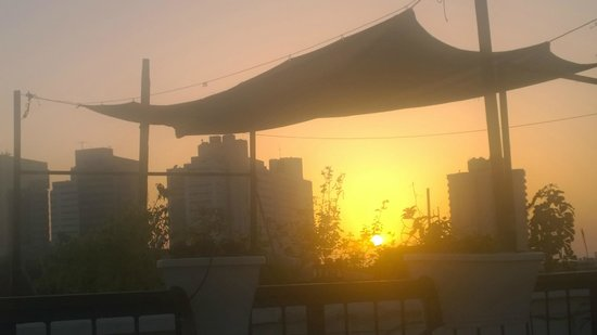 Villa Vilina Oasis in Neve Tzedek: Roof terrace sunset