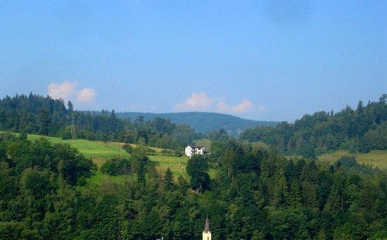 Hotel Golebiewski: Widok z okna