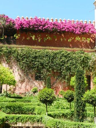 Casa de Pilatos: een van de tuinen