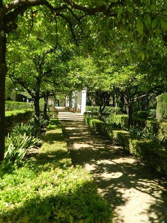 Parc de María Luisa : de tuin