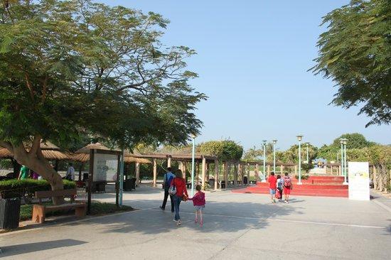 Jumeirah Public Beach: Парк Джумейры