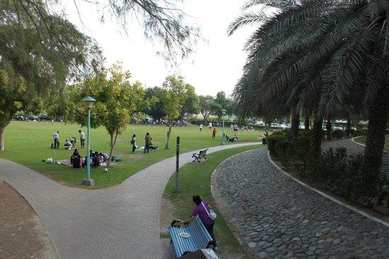 Jumeirah Public Beach: Парк Джумейры. Пикник на газоне.