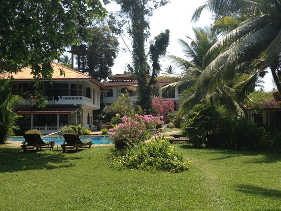 写真Ayubowan Swiss Lanka Bungalow Resort枚