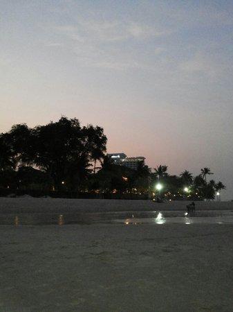 Sea Harmony : Hilton hotle ny night