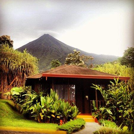 Hotel Lomas del Volcan: Perfecto !