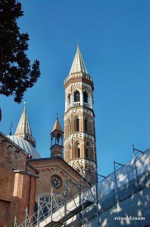 Basilica di Sant'Antonio - Basilica del Santo: Колокольня