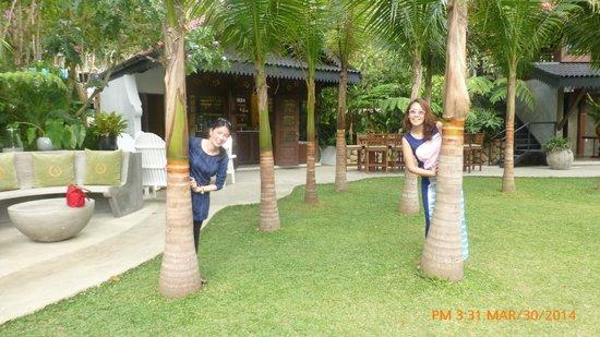 Antonio's Garden: The garden area
