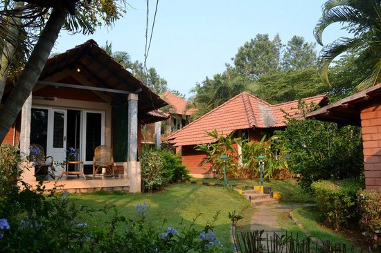 Young Island Resorts: Cottages