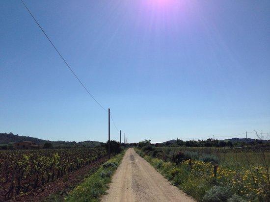Agriturismo Marongiu: strada