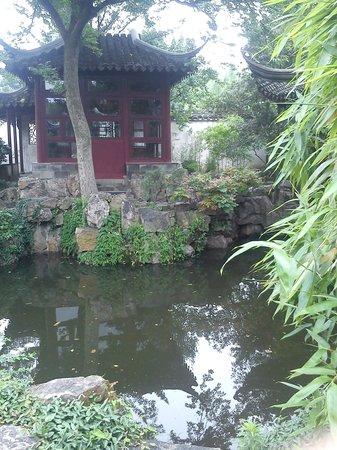 Jardins classiques de Suzhou : SERENITE