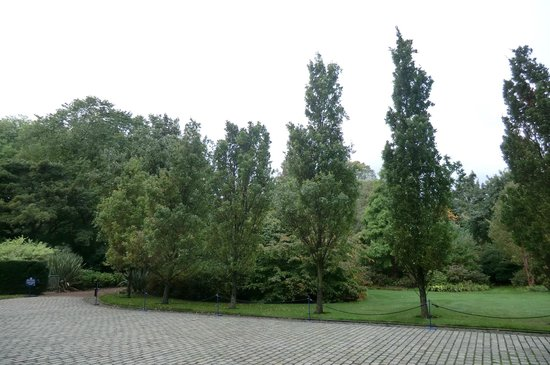 Palace of Holyroodhouse: королевский парк