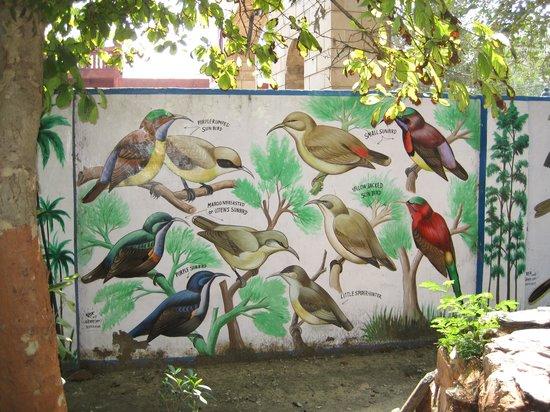 Taj Nature Walk: Bird sanctuary MAR2014