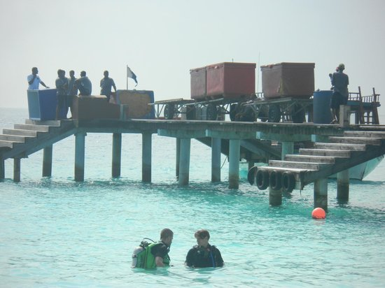 Reethi Beach Resort: Vue de la plage affectée au 186