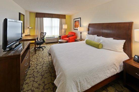 Hilton Garden Inn Atlanta Perimeter Center: King Bed Rooms