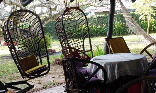 Dim's Hostal : il giardino