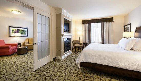 Hilton Garden Inn West Edmonton Jacuzzi Suite King Bed With Fireplace
