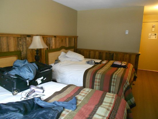 Northern Lights Lodge: Room
