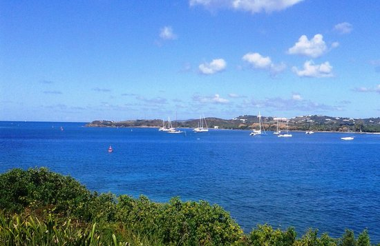 Hotel on the Cay : View from our room!