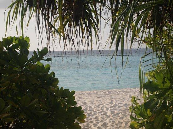 The Sun Siyam Iru Fushi Maldives: Vue depuis la villa 301