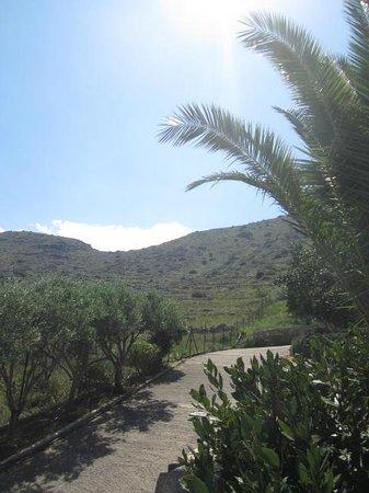 Elounda Vista Villas : view behind