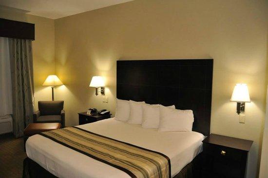 Best Western Oasis Inn : King Guest Room