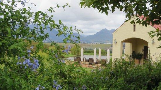 Asara Wine Estate & Hotel: Le site