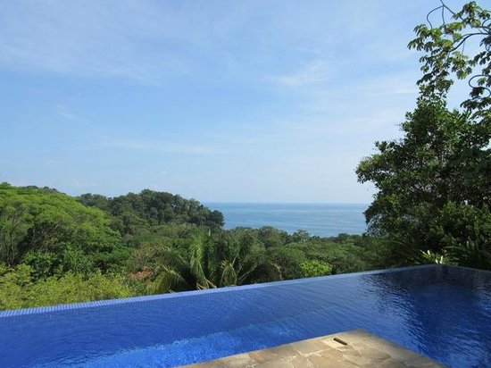 TikiVillas Rainforest Lodge & Spa: View from the infinity pool