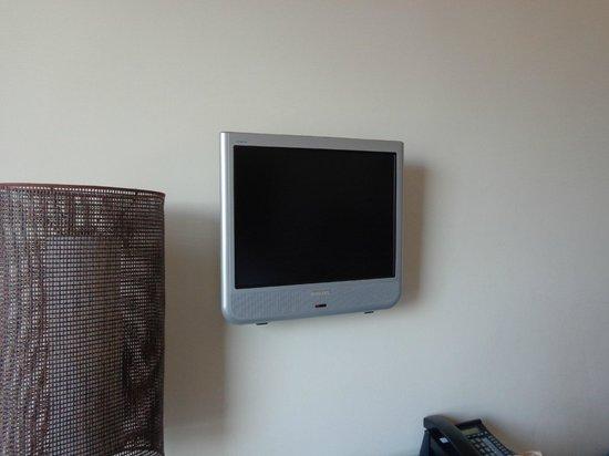 Hilton Florence Metropole : Small tv