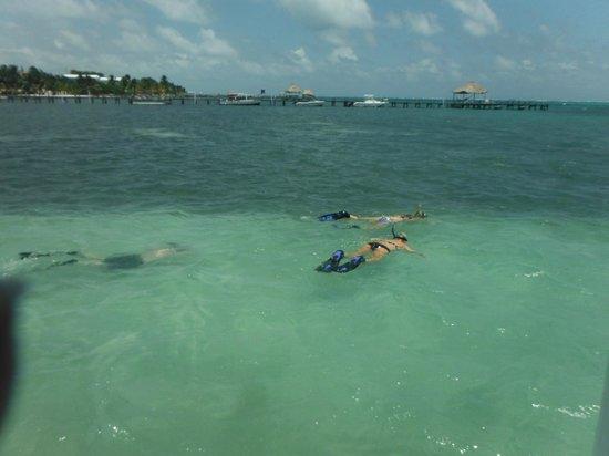 Athens Gate Beach Resort: Snorkeling off dock