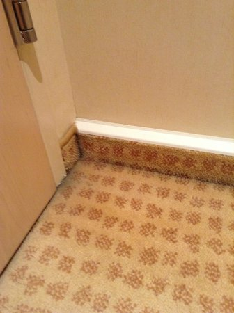 Hilton Vienna: carpet