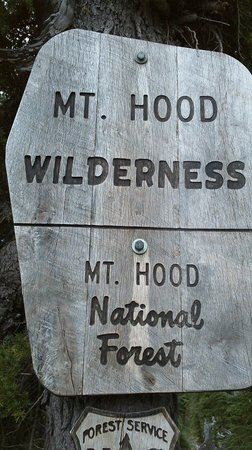 Summit Meadow Cabins: Mt Hood Wilderness is nearby