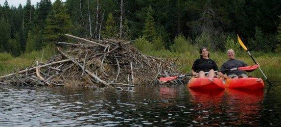 Summit Meadow Cabins : Kayak at Trillium or Timothy Lake