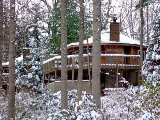 Snow shot of jackie 39 s gym picture of asheville cabins of for Tripadvisor asheville nc cabins
