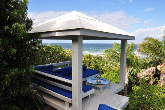 Days At Sea Beach Lodge: garden