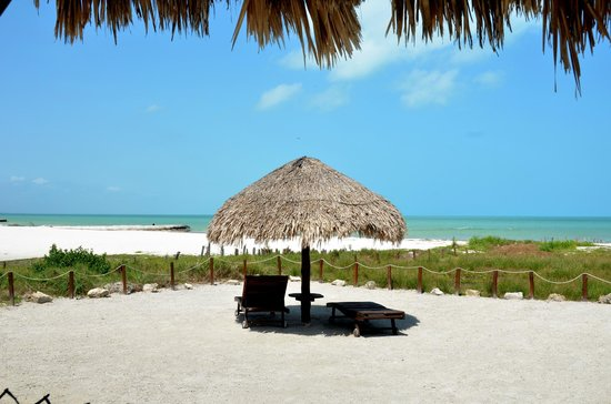 Beach Guesthouse Holbox Apartments & Suites: 1