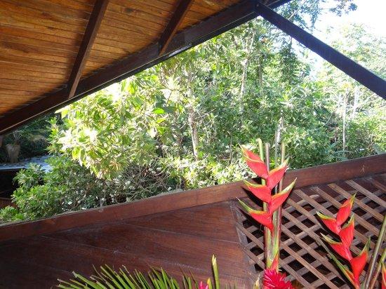 Tree House Lodge: Vista del master bedroom de la suite