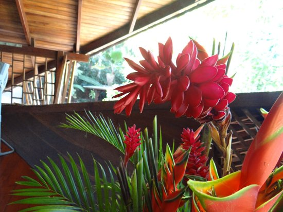 arreglos de flores del tree house lodge