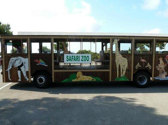 Safari Zoo de Mallorca: Zug (Bus)