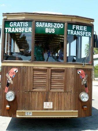 Safari Zoo: Zug (Frontansicht)