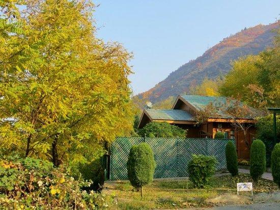 Chashme Shahi Gardens : JKTDC Huts
