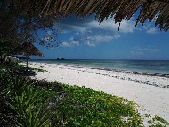 Anna of Zanzibar: Strand bei Anna