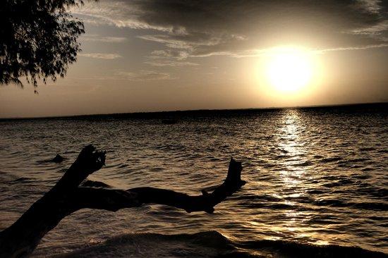 Anna of Zanzibar: Traumhafter Sundowner