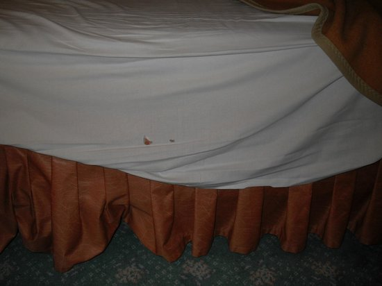 Panorama Hotel Prague: Holes in the bedding