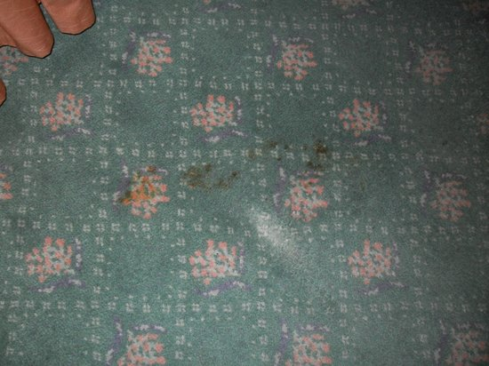 Panorama Hotel Prague: Stains all over the carpet