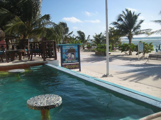 Nacional Beach Club & Bungalows: View from the pool deck