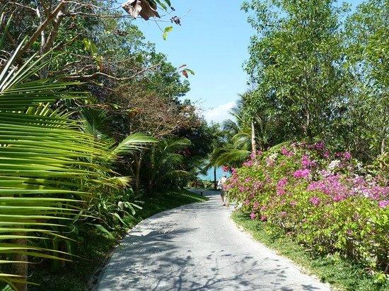 Vinpearl Luxury Nha Trang : дорожка к пляжу