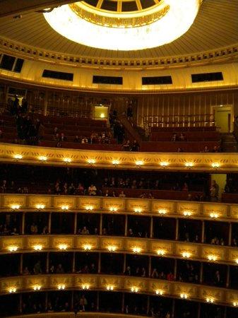Staatsoper: Венская Опера
