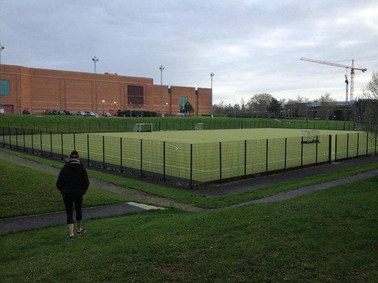 University of Limerick: One of many athletic fields